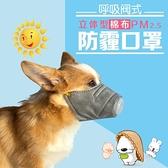 寵物狗口罩防病毒寵物防霧霾口罩嘴罩嘴套防疫情防撿食防咬PM2.5