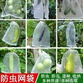 防鳥網防蟲網袋瓜果防果蠅防鳥蟲用網果樹袋葡萄套袋專用無花果防鳥神器 【快速出貨】