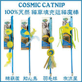 *KING WANG *美國 Ourpet's Durapet《宇宙貓100%貓草填充逗貓魔杖》使貓咪無法抗拒的逗貓棒