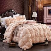 羽絨被 寢具-素雅柔軟鬆冬季白鵝絨雙人棉被6款72aa13【時尚巴黎】