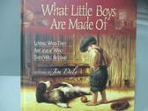 【書寶二手書T5/原文書_MKA】What Little Boys Are Made Of_Jim Daly_原價525