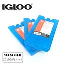 IgLoo MAXCOLD系列保冷劑25199 M號【三入一組】/ 城市綠洲 (保冷、保鮮、戶外露營、冰桶使用)