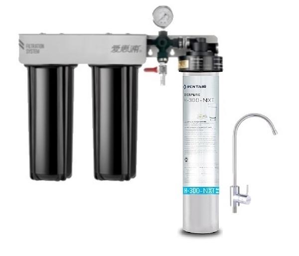 愛惠浦EVERPURE PurVive-Trio H300NXT + RES-800 + PF-101 強效型淨水器(除塑化劑) ~ 含標準安裝