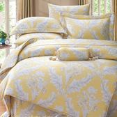 ✰雙人 薄床包兩用被四件組✰ 100%純天絲(加高35CM)《夏之妍》