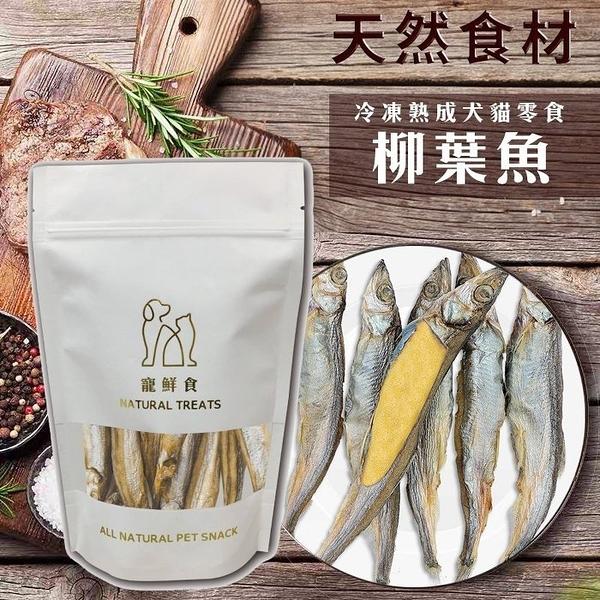 寵鮮食《冷凍熟成犬貓零食-柳葉魚40g》 可常溫保存 無其他添加物 凍乾零食