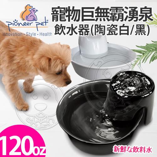 【zoo寵物商城】美國Pioneer Pet》寵物巨無霸湧泉飲水器(D160陶瓷白/D156黑)