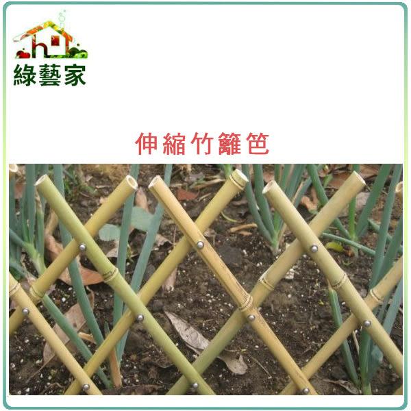 【綠藝家】伸縮竹籬笆(可任意伸長)30公分