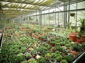 [台中]羅望子生態農場-精緻單人農業體驗一日遊