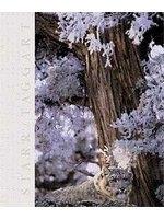 二手書《Biology: The Unity and Diversity of Life (with CD-ROM, Non-InfoTrac Version)》 R2Y ISBN:0534377955