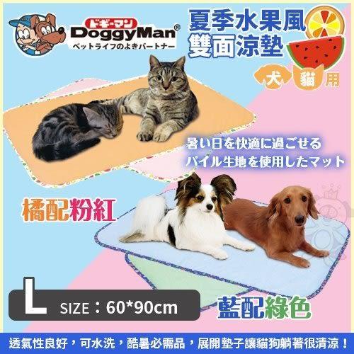 *WANG*DoggyMan《犬貓用夏季水果風雙面涼墊L-橘配粉紅  藍配綠》酷暑必需品 犬貓用涼墊