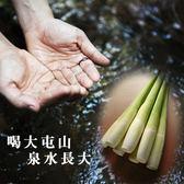 三芝茭白筍10台斤含運組
