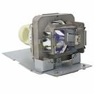 BenQ-OEM副廠投影機燈泡5J.JCM05.001/適用機型MX726、MW727