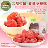 三隻松鼠 新鮮草莓乾80g/袋