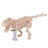 《 NanoBlock 迷你積木 》NBC-185 迷你暴龍骨架模型  ╭★ JOYBUS玩具