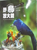 【書寶二手書T7/動植物_AE2】野鳥放大鏡-住行篇_許晉榮