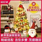 台灣現貨 60cm聖誕樹家用裝飾網紅松針ins套餐粉色仿真擺件大型發光 60cm套餐