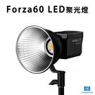 黑熊館 Nanguang 南冠 Forza 60 LED聚光燈 輕巧好攜帶 遠端控制 補光燈 攝影燈 戶外拍攝