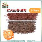 【綠藝家】紅火山石-細粒2~3mm(1公...