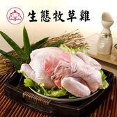 【福壽生態農場】牧草雞─全雞