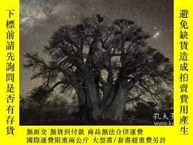 二手書博民逛書店古樹攝影集:時光的自畫像罕見英文原版 Ancient Trees: Portraits of TimeY210