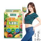 張景嵐代言【每朝健康】植酵高纖乳酸菌R14包/盒x1盒
