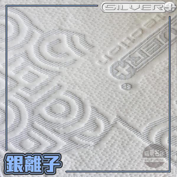 【嘉新床墊】雙人加大6尺【New銀離子床包】【抗菌除臭】頂級手工薄墊/台灣領導品牌