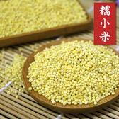 糯小米 黃小米 中國小米 可製小米粥小米粽小米QQ蛋點心糕點 五穀雜糧 600克 【正心堂】