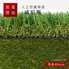 仿真草皮 【威尼斯】 尺寸1X1m 人工草皮 人造草皮 拼接 園藝 景觀 美勞 建築材料 綠化 塑膠草皮