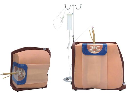 脊椎穿刺模型 腰椎穿刺模擬人 人體模型 硬膜外 腰穿 骨穿 模擬人