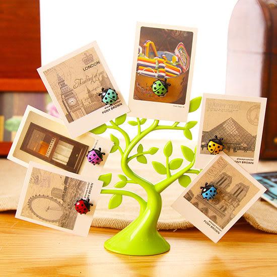 ◄ 生活家精品 ►【L155】創意瓢蟲磁鐵架 磁性 冰箱 鐵質 吸附 留言貼 裝飾 擺設 名片 紙條 立體