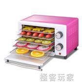 乾果機家用食品烘乾機水果蔬菜寵物肉類食物脫水風乾機小型 ATF 電壓:220v『極客玩家』