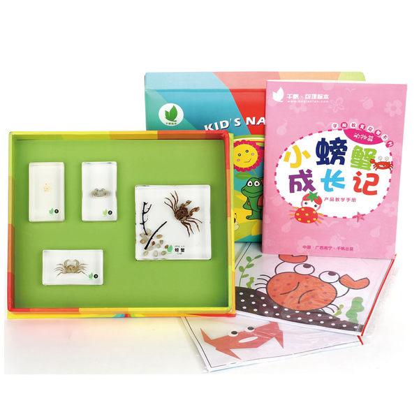 小螃蟹成長記/簡體字/標本