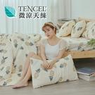 [小日常寢居]#HT020#絲柔親膚奧地利TENCEL天絲5尺雙人床包+枕套三件組(不含被套)台灣製/萊賽爾Lyocell