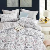 【金‧安德森】精梳棉《伊賽爾》兩用被床包四件組 (標準雙人)