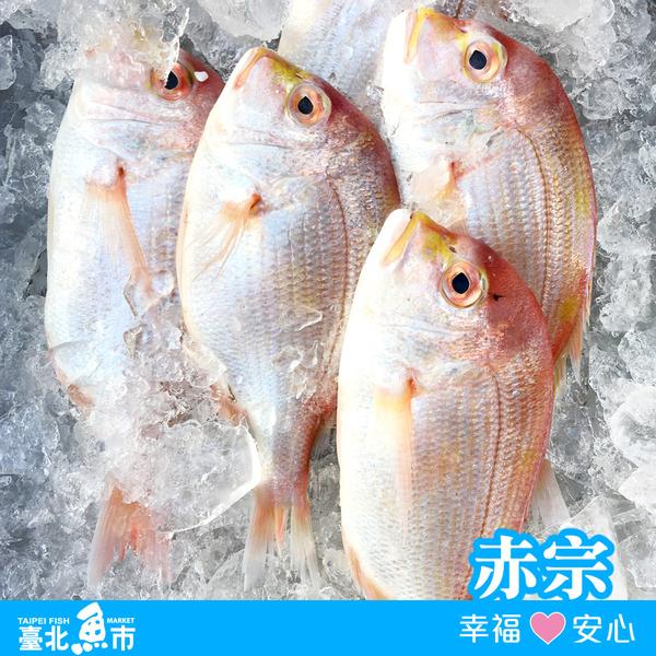 【台北魚市】 赤宗 400g±10%