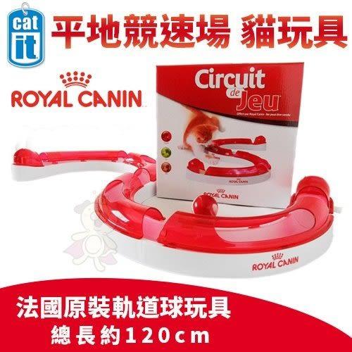 *WANG*ROYAL CANIN 法國皇家《平地競速場 貓玩具》軌道球玩具