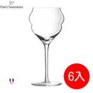 法國弓箭C&S紅酒杯高腳杯新款玻璃杯香檳杯(L9414)6入組