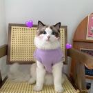 夏季IG狗狗貓咪衣服防掉毛薄款可愛英短藍白布偶貓貓無袖背心【小狮子】