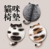 ⭐星星小舖⭐台灣出貨 貓咪椅墊 坐墊 椅墊 貓咪造型 圓形椅墊 可愛日系風 記憶海綿