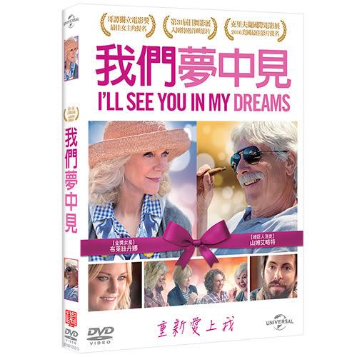 我們夢中見DVD I'll see you in my dreams