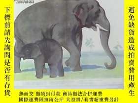 二手書博民逛書店幼兒認識自然教學圖片罕見野獸 象 第7張Y23537 本社編 上