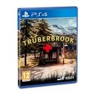 PS4 遊戲片 Trüberbrook 墨池鎮 英文字幕