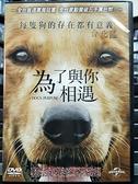 挖寶二手片-0B07-305-正版DVD-電影【為了與你相遇】-丹尼斯奎德(直購價)
