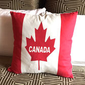 ♚MY COLOR♚國旗風格鹿皮絨抱枕(含枕心)  靠枕 枕頭 方枕 靠墊 沙發 枕墊 護腰 枕套 可拆洗【V42】