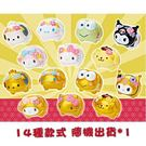 Sanrio SANRIO明星迷你豬公造型存錢筒(14種款式,隨機出貨*1個)★funbox★_307459