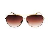 DELIGHT 鈦金屬太陽眼鏡-米金