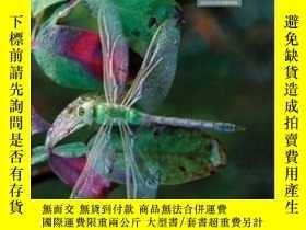 二手書博民逛書店Concepts罕見In Biology W bound In Olc CardY364682 Eldon E