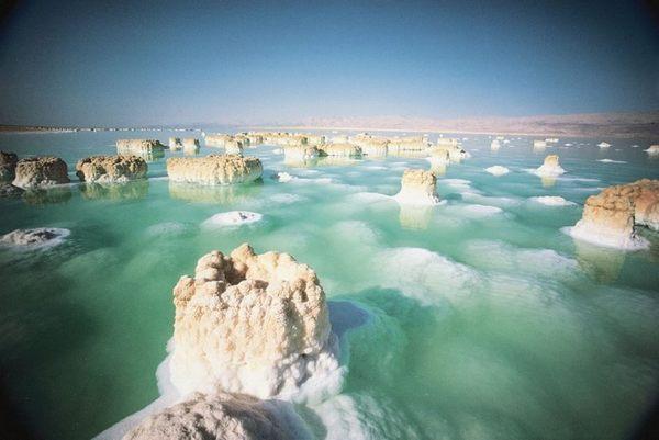 Sea Of Spa 死海礦物護手霜