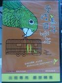 挖寶二手片-E07-009-正版DVD【愛情鳥日子】-瑞秋尼可拉斯*傑克森賀斯特