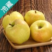 【日本】蜜桃TOKI蘋果28 /2粒(350G±5%/粒)【愛買冷藏】